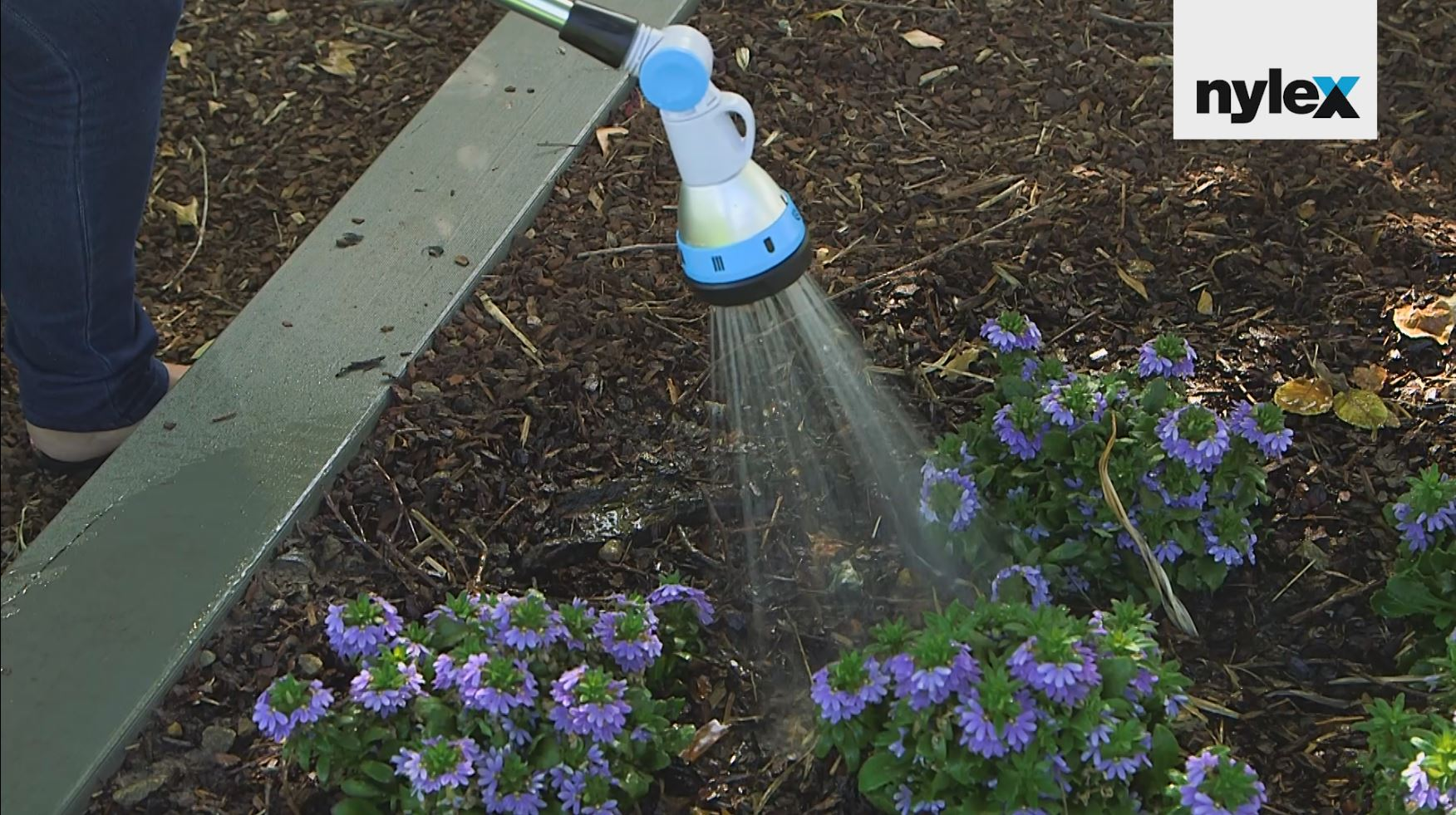 Nylex Essential Watering Tips – Deep Watering